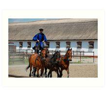 Horsemanship Display in the Puszta, Hungary Art Print