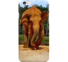 STUMPY THE ELEPHANT. iPhone Case/Skin