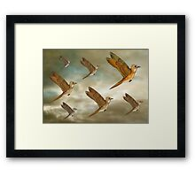 Flock of birds flying through the heavens Framed Print