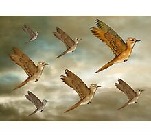 Flock of birds flying through the heavens Photographic Print