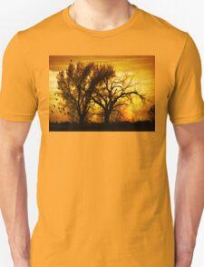 Country Sunset Unisex T-Shirt