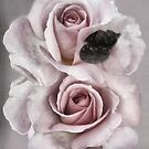 Barely Blush by RC deWinter