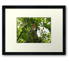 The Red King Framed Print
