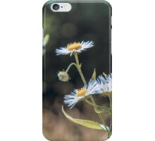 Daisy Flowers iPhone Case/Skin