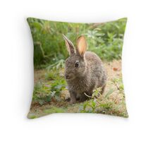 Rabbit in the Morning Throw Pillow