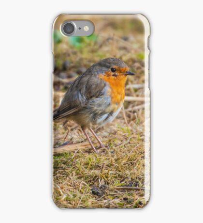 Robin on the Floor (Erithacus rubecula) iPhone Case/Skin
