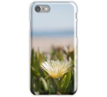 Blooming succulent on Californian beach iPhone Case/Skin