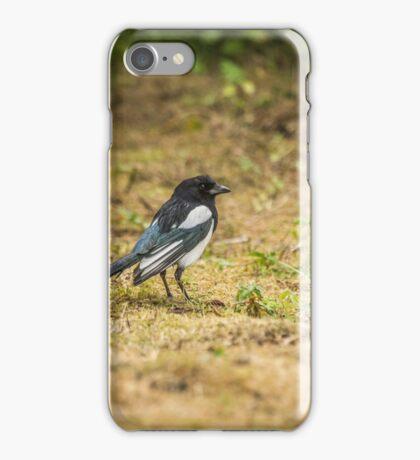 Magpie (Corvidae) iPhone Case/Skin