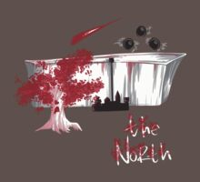 The north is white and red! by Arry