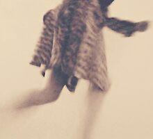 some days i'm an animal some days i'm a pet by PJ Ryan