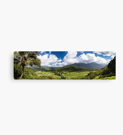 Hanalei Valley's taro fields in Kauai, Hawaii Canvas Print