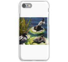 Ducks and Ducklings iPhone Case/Skin