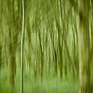 Impressionist Forest by GrahamCSmith
