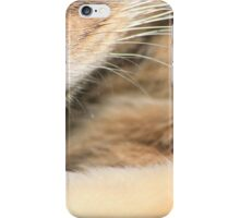 Close-up of tabby cat iPhone Case/Skin