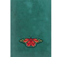 Butterfly in Jewel Colors on Teal Linen Photographic Print
