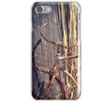 Vintage Rust iPhone Case/Skin