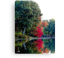 Falling into Autumn Canvas Print