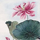 Lotus Flower, Petals, Leaves - Pink Green by sitnica