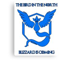 Team Mystic (Blizzard is Coming) Canvas Print