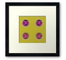 Four orbs Framed Print