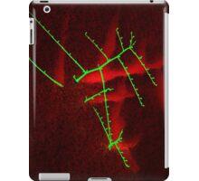 An Oriental Touch iPad Case/Skin