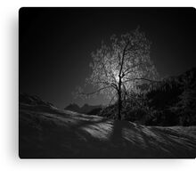 Backlit Canvas Print