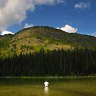 Mountain Lake Fisherman by Karin  Hildebrand Lau