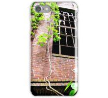 Healthy Leaves iPhone Case/Skin