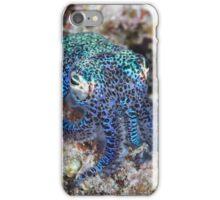 Bobtail Squid iPhone Case/Skin