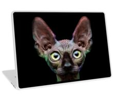 Sphynx Cat Oil Painting Chroma Laptop Skin