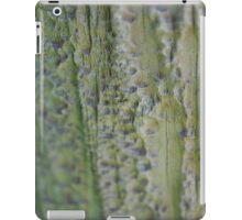 textured fence iPad Case/Skin