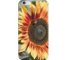 Sunflower Vintage Sun Warmed iPhone Case/Skin
