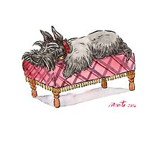 Scottie on a couch by groovyart
