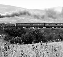 Age of Steam by Stephen Knowles