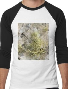Lichen on tomb in Shalwy Valley, Kilcar, Donegal Men's Baseball ¾ T-Shirt