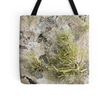 Lichen on tomb in Shalwy Valley, Kilcar, Donegal Tote Bag