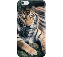 Bengal tiger iPhone Case/Skin