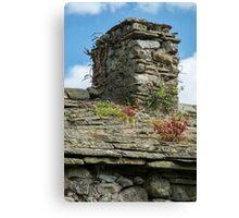 Chimney stack plant life Canvas Print
