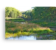 Nemasket River  Canvas Print