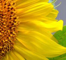 Happy Sunflower Sticker