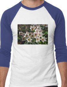 A Bunch of Miniature Tulips Celebrating the Spring Season Men's Baseball ¾ T-Shirt