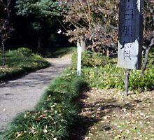 Morning in Korakuen by tensaijanai