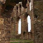 Elgin Arches and Window by kalaryder