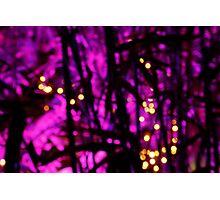 Purple Riot Photographic Print
