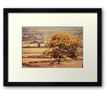 Golden Breeze Framed Print