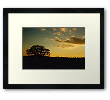 Broad Oak Framed Print