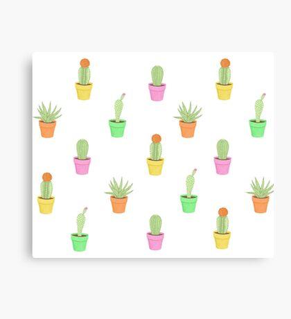 Colourful Cactus plants Canvas Print
