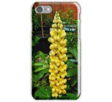 A Perfect Lupin iPhone Case/Skin