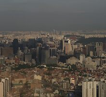 Seoul from Mt Ansan by artyed