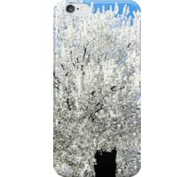 The Snow Tree #2 iPhone Case/Skin